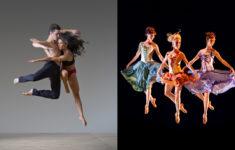 Colorado Springs Dance Theatre Midseason